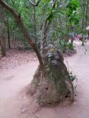Ventilation Shaft to Tunnels, Cu Chi Tunnels, outside Ho Chi Minh City