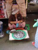 Fish Seller, Hoi An Market