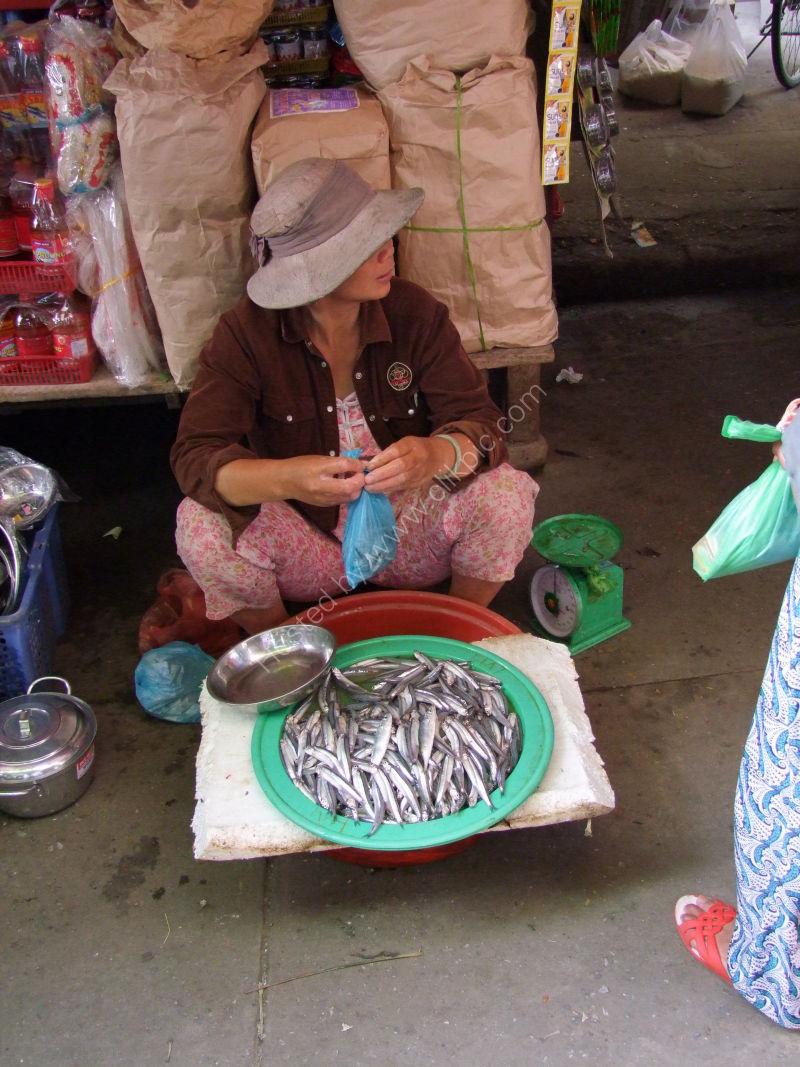 Fishmonger, Hoi An Market