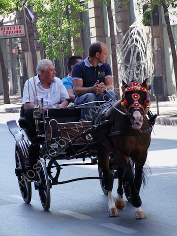 Sicilians in Horse & Carriage, Via Roma, Palermo