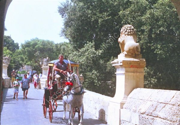 Horse & Carriage, Malta