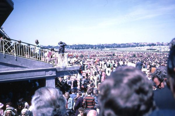 Crowds at 1972 Melbourne Cup, Flemington Racecourse, Melbourne