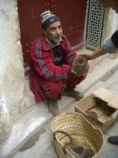 Moroccan Selling Hedgehogs, Fes