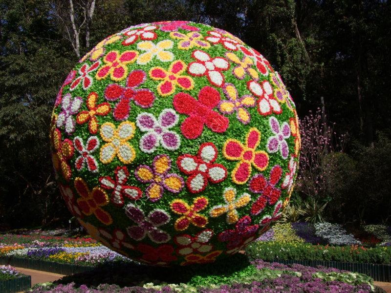 Flower Ball Display