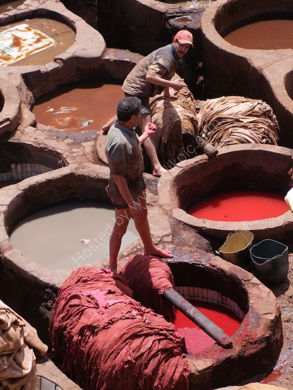 Moroccan Tannery Worker, Fes