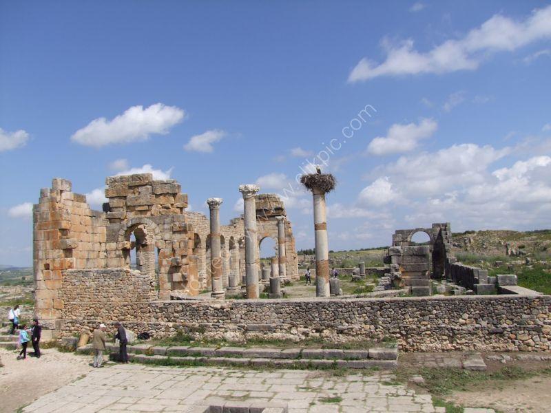 Basilica Building, Volubilis