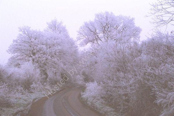 Winter Scene, New Mill Road, Finchampstead