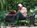 Having a Snooze! central Park, Havana