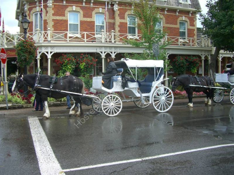Horse & Carriage, Prince of Wales Hotel, Niagara on the Lake