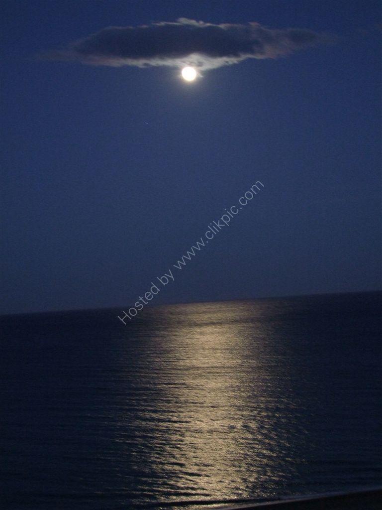 Moonlight Relection! Playamar
