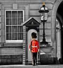 The Welsh Guard.