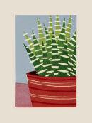 Zebra Plant II, 2014
