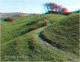 Castle Hill Earthworks 3