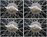 MG Wire Wheel Combine
