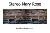 Mary Rose 2013 Stereocard