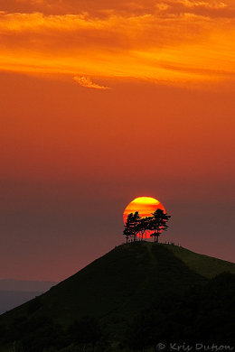Colmers Hill Sunset (Portrait)
