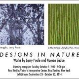 Designs in Nature