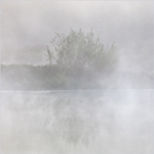Early Morning Mist 2