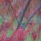 Impressionist Autumn Leaves