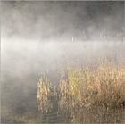 Mist on the Lake #2