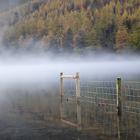 Mist on the Lake #4