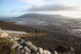 Dawn, Carlingford Lough (Lake) and Mourne Mountains, Counties Louth and Down