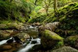 Poulanass Waterfall, Glendalough, Wicklow Mountains National Park, Wicklow