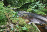 Athdown Brook, Kippure, Wicklow Mountains, Wicklow