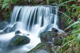Waterfall, Kilbroney Forest, Rostrevor, Carlingford Lough, Down