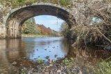 River Nore, Inistioge, Kilkenny