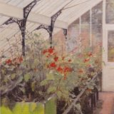 Greenhouse Interior by David Newens (Assoc RP)