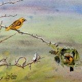 Weaver Bird, by Jim Coggins