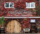 Stonyridge Vineyard -2