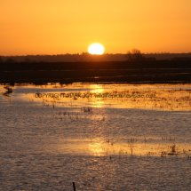 Sunrise over The Ouse Washes (2)