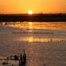 Sunrise over The Ouse Washes (3)