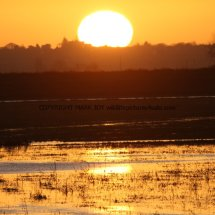 Sunrise over The Ouse Washes (1)