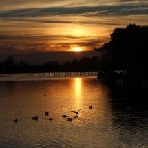 Sunset at Hatchet Pond (1)