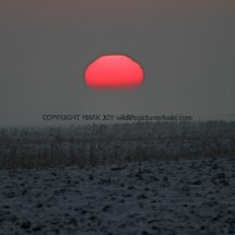 Sunset over the Fens (1)