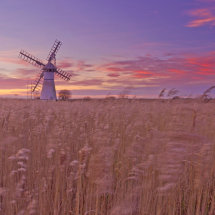 Sunset over the Thurne Dyke Windmill