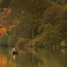 Autumnal scene at Winkworth Arboretum, nr Godalming, Surrey