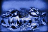 Shells Blue