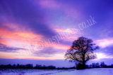 Arundel Fading Winter Sunset