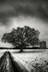 Arundel Winter Walk