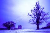 Arundel Cold Light