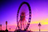 Brighton Wheel Colour