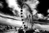 Brighton Wheel Mono