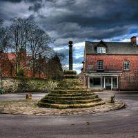 Repton Village 8