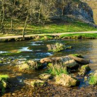 Dovedale 14