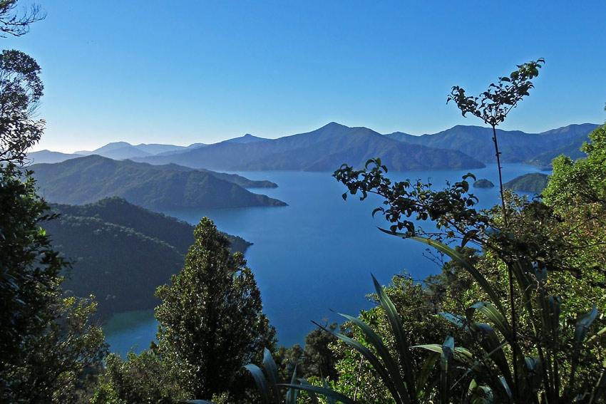 Queen Charlotte Sound, New Zealand