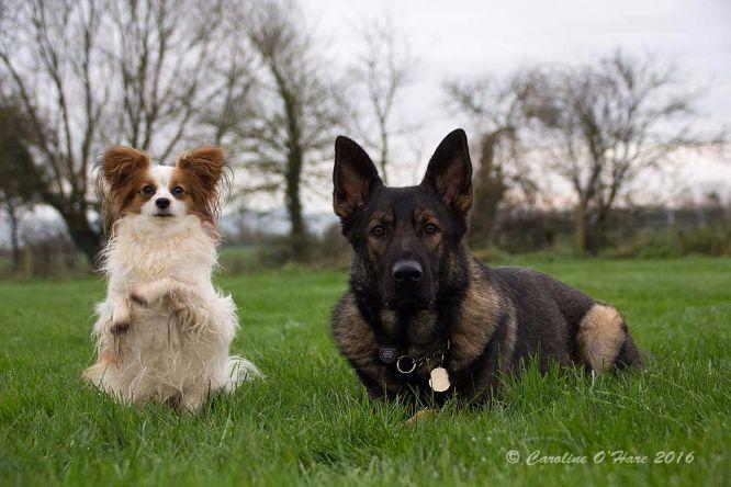 Beano and Kai